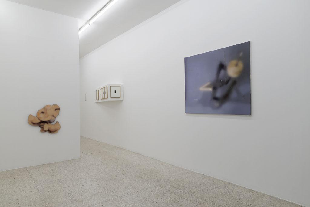 Julien Tiberi, Julien Tiberi 24 mai  — 29 juin 2014