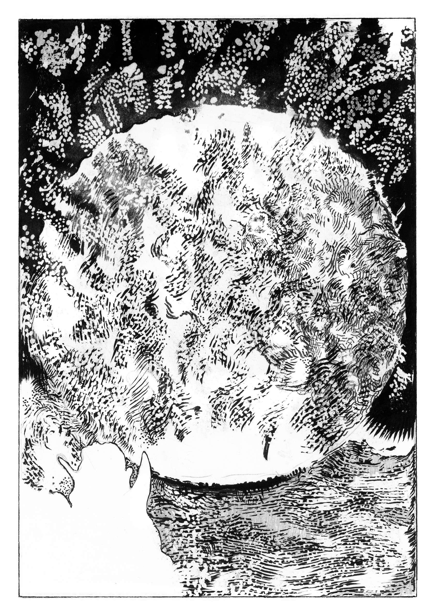 Julien Tiberi, Symphonic Lava, 2019 Encre et mine de plomb sur papier17.5 × 12 cm / 6 7/8 × 4 6/8 in. | 31.5 × 25.5 cm / 12 3/8 × 10  in. (encadré/framed)