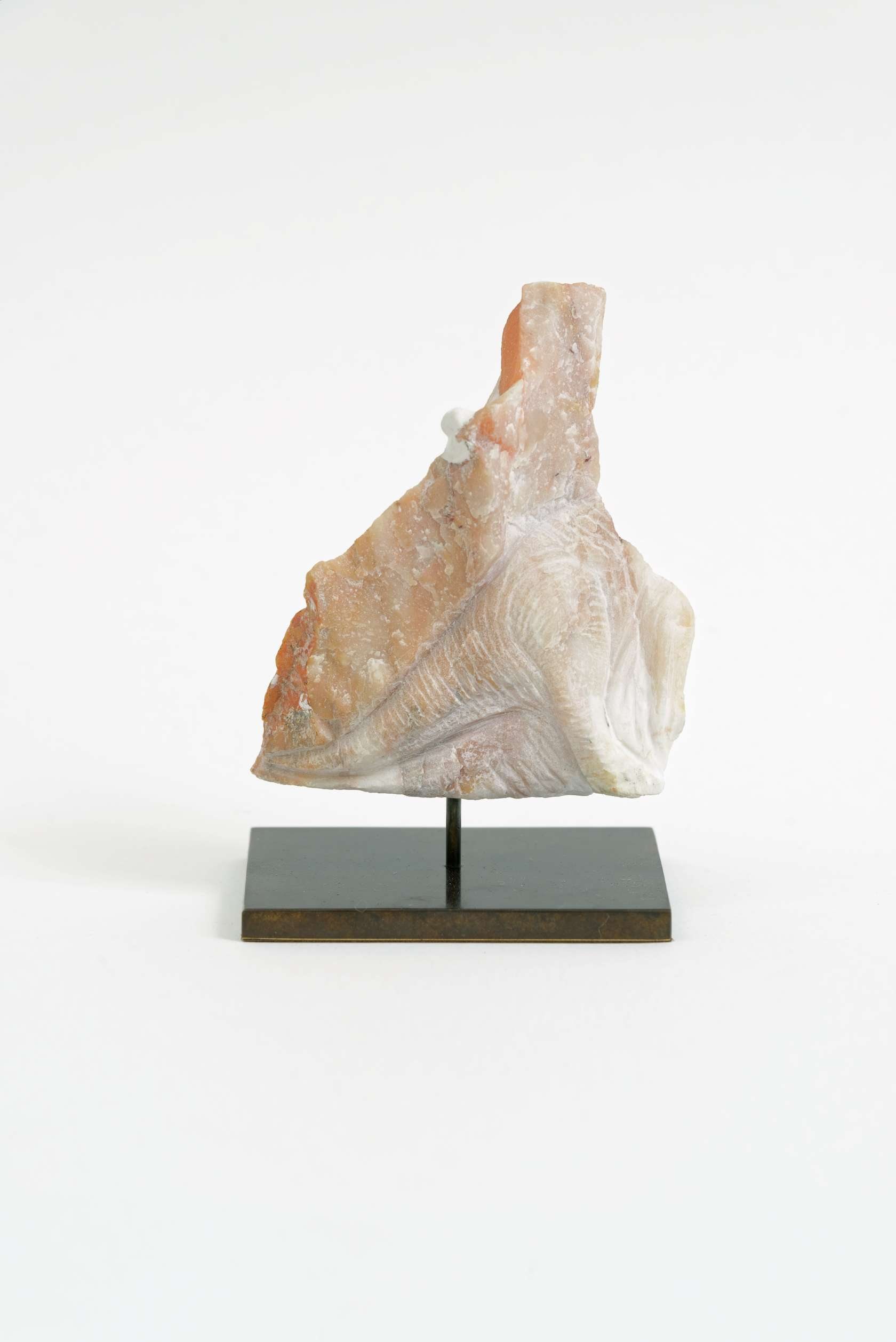 Laurent Le Deunff, Pachycephalosaurus, 2015 Taille directe sur grès rose8.1 × 10.1 × 4.8 cm / 3 2/8 × 4  × 1 7/8 in.