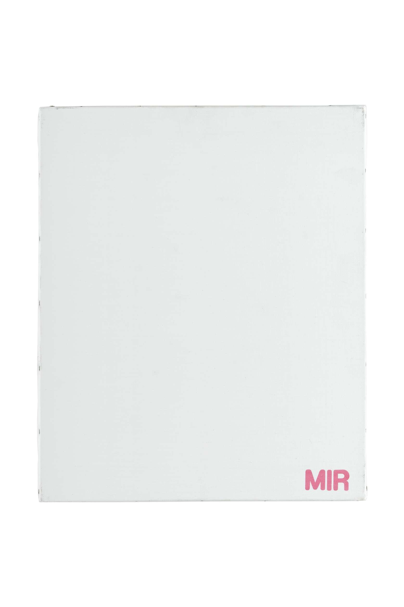 Présence Panchounette, Monochrome lessive (Mir), 1988 Acrylique et décalcomanie sur toile