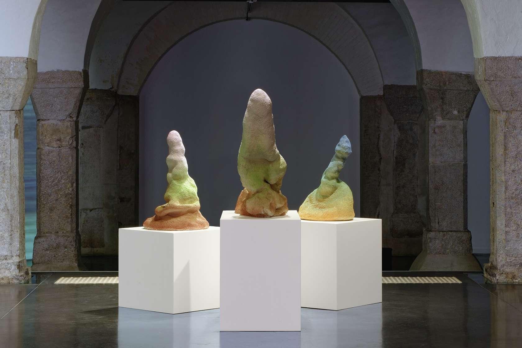 Salvatore Arancio, AI-LAAU; PELE; PII, 2013 Vue de l'exposition