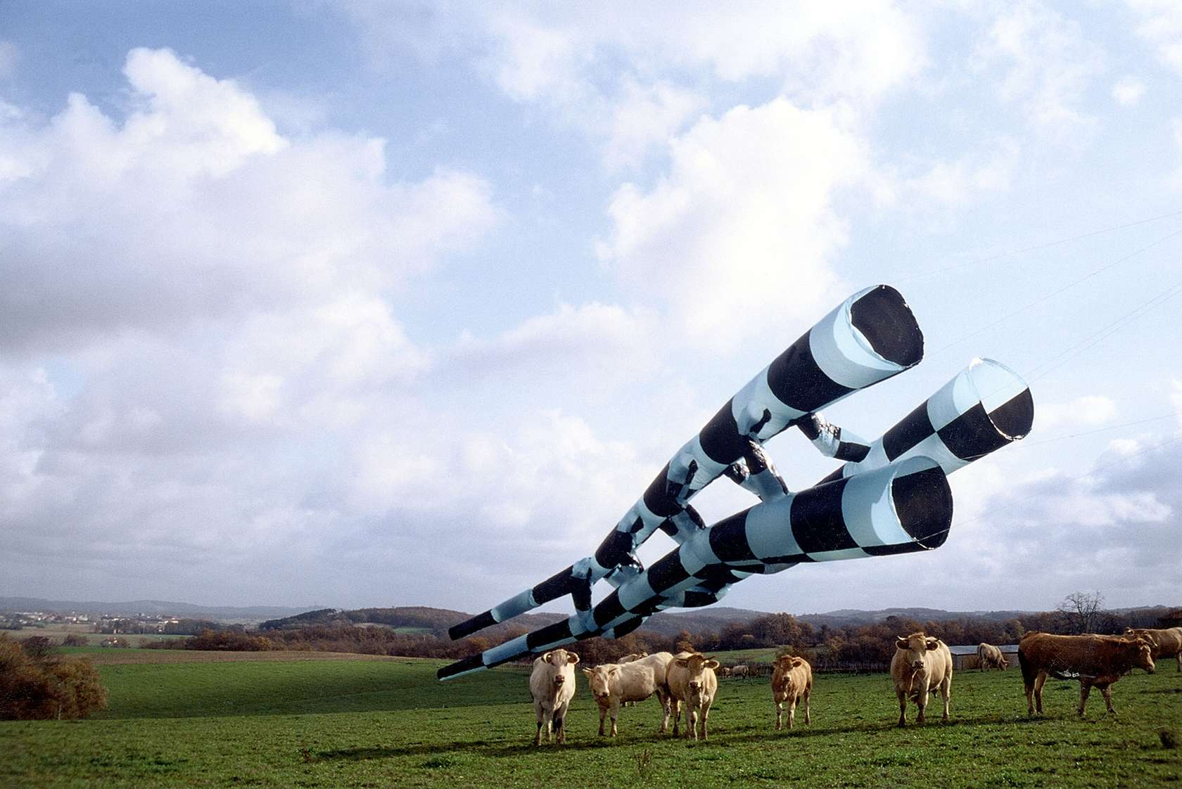 Thomas Lanfranchi, Sans titre, 1996 Impression pigmentaire sur papier Hahnemülhe100 x 135 cm / 39 3/8 x 53 1/8 inches