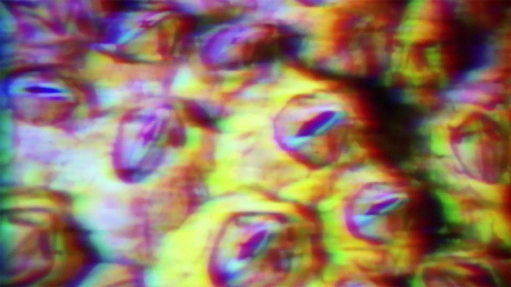 Salvatore Arancio, (video still) 