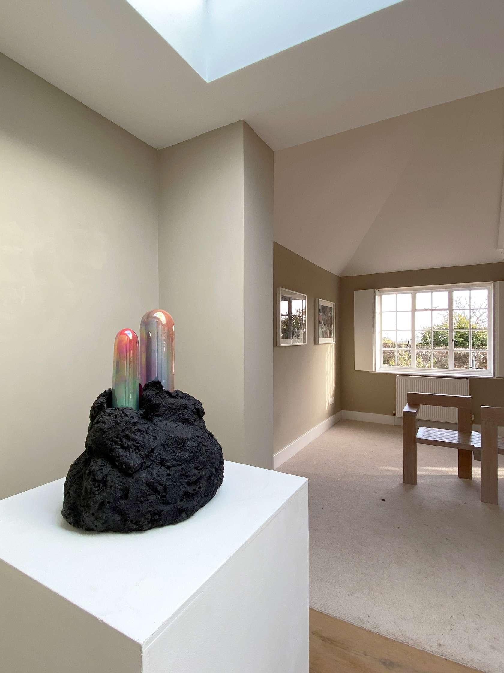 Psychotropics, New Art Centre, Salisbury (UK) 25 janvier - 22 mars 2020 © New Art Centre