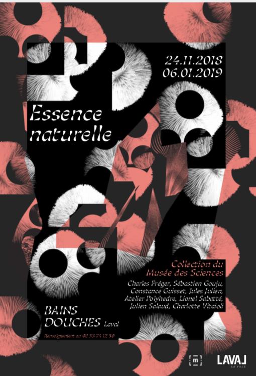 Sébastien Gouju Essence naturelle Musée des sciences de Laval (FR) 24 novembre 2018 — 6 janvier 2019