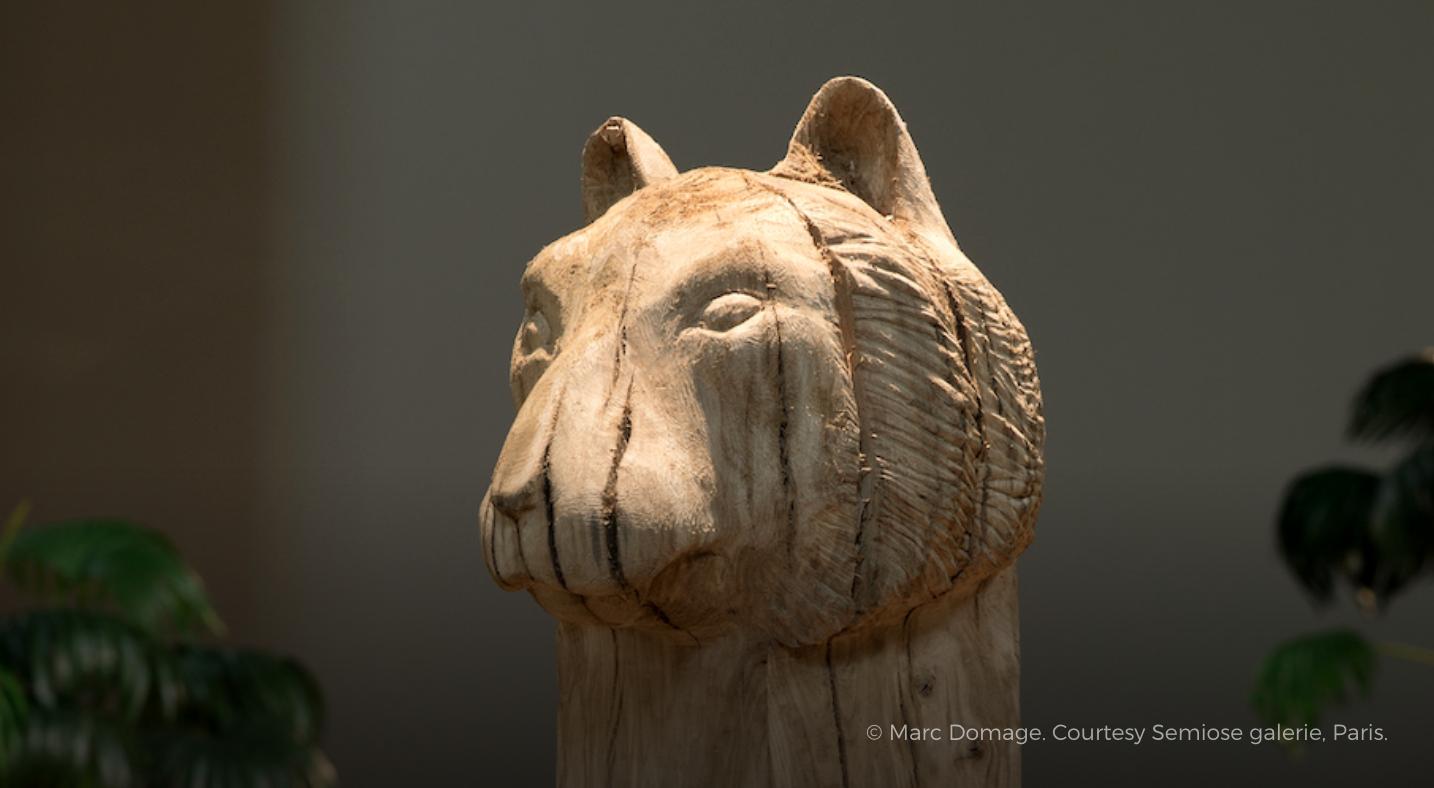 """Laurent Le Deunff """"Tête de tigre"""" et """"Marie-Hélène"""" Parc Zoologique, Paris (FR) 6 octobre 2018"""