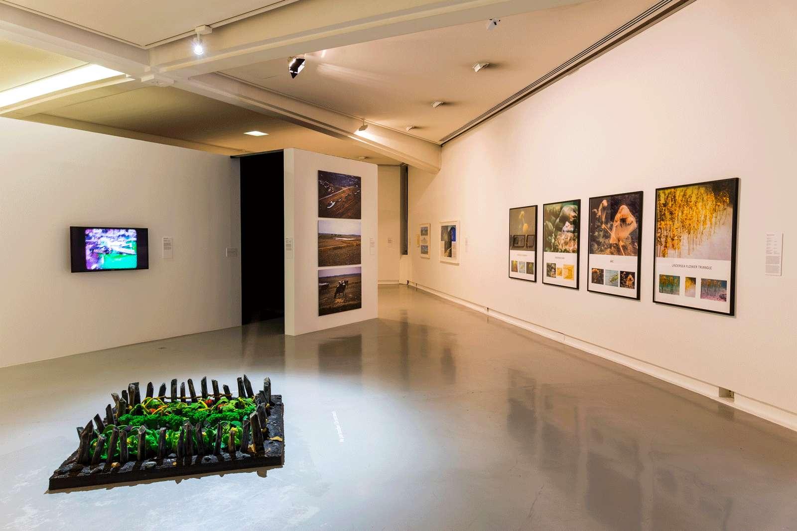 Piero Gilardi Cosmogonies - Au gré des éléments MAMAC - Musée d'Art Moderne et d'Art Contemporain de Nice, Nice (FR) 9 juin  — 16 septembre 2018