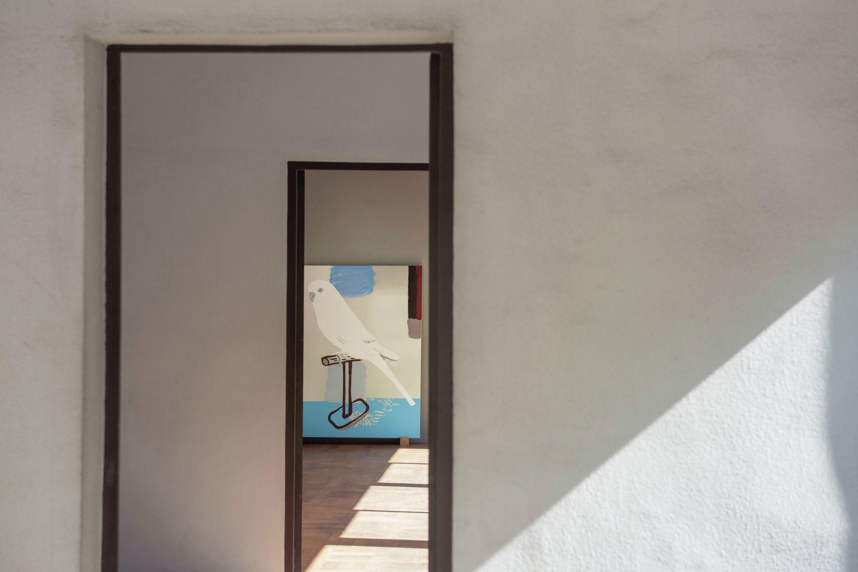 Françoise Pétrovitch, Perruche, 2019 Habiter la Villa, Villa Savoye, Poissy (FR) 18 septembre 2020 - 24 janvier 2021 © Hervé Plumet